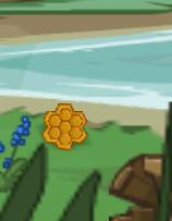 HoneycombWildwoodGlen